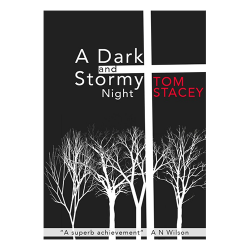 A Dark and Stormy Night - cover
